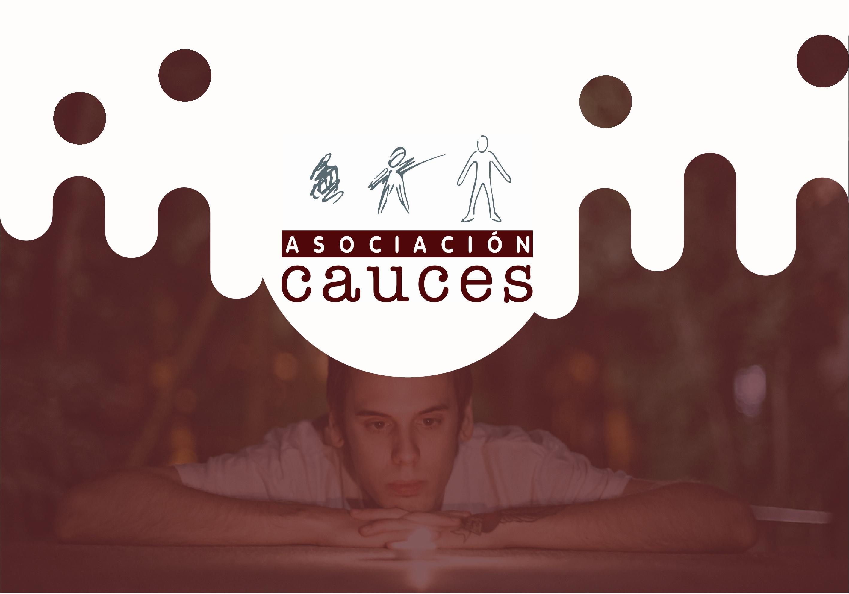 MEMORIA-ASOCIACION-CAUCES-2016-018